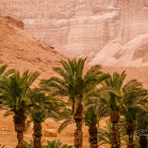 The surroundings of the Dead Sea, Israel.