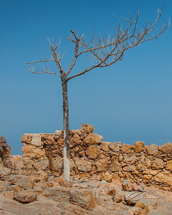 Masada, Isreal