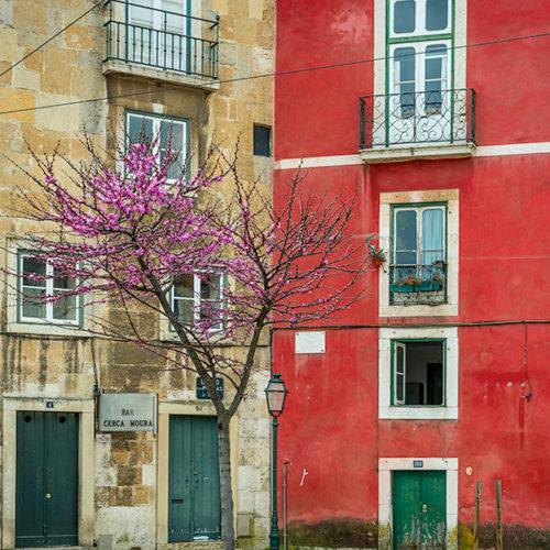 Lisboa_4232