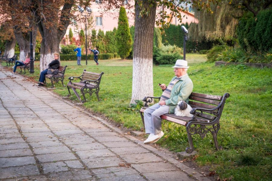 Sighisoara, The Parks and People