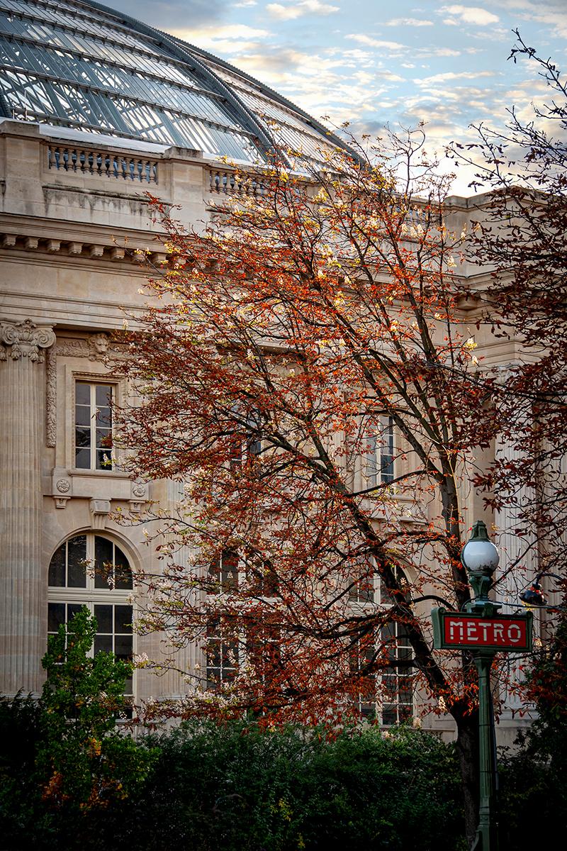 Paris_2872